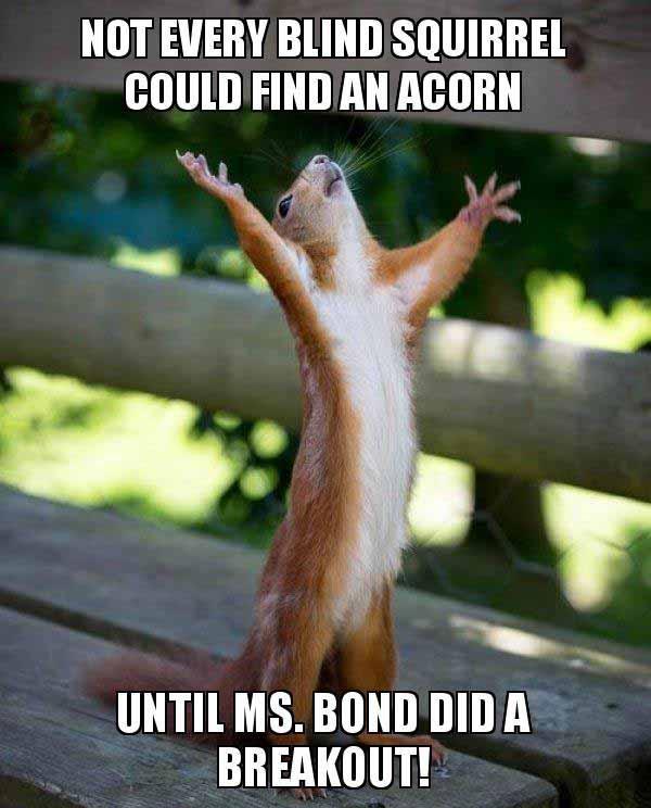 blind squirrel meme