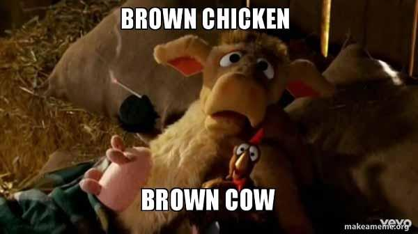 brown chicken brown cow memes