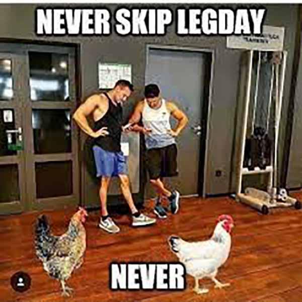 chicken legs meme