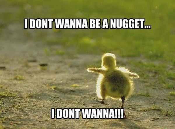 chicken nugget meme