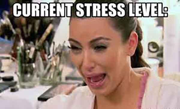 current stress level meme
