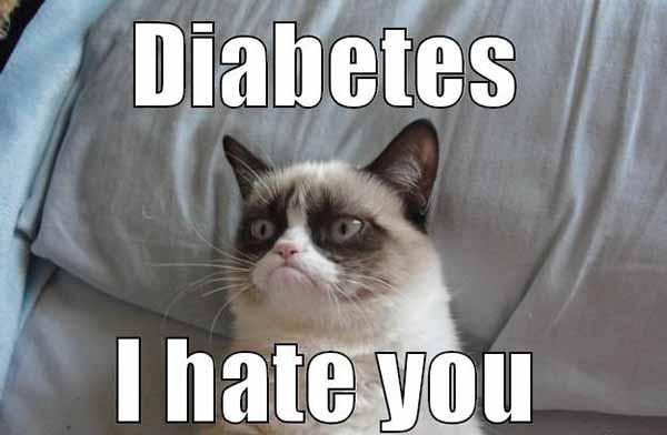 diabetes i hate you - diabetes cat meme