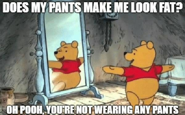 does-my-pants-make-me-look-fat-pooh meme