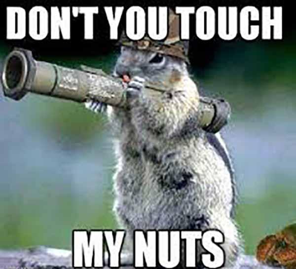 dont you touch my nuts