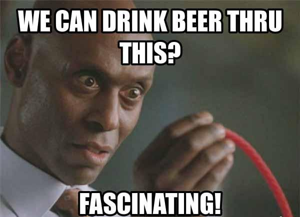 drink beer meme