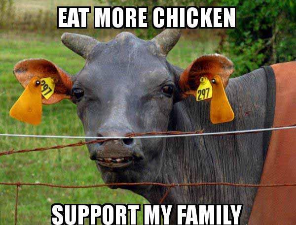 eat more chicken meme