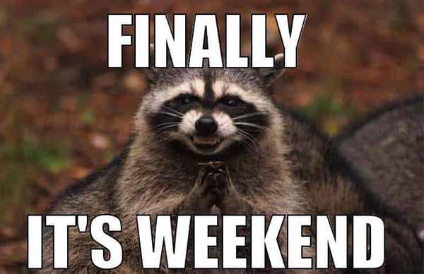 funny weekend meme