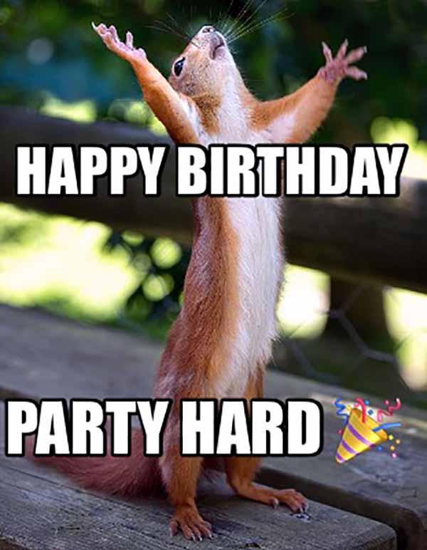 happy birthday party hard