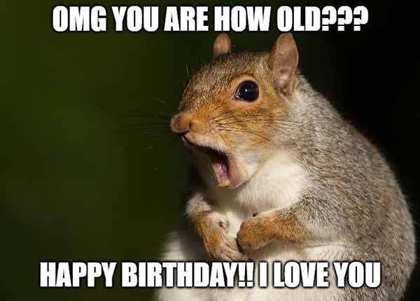 happy birthday squirrel meme