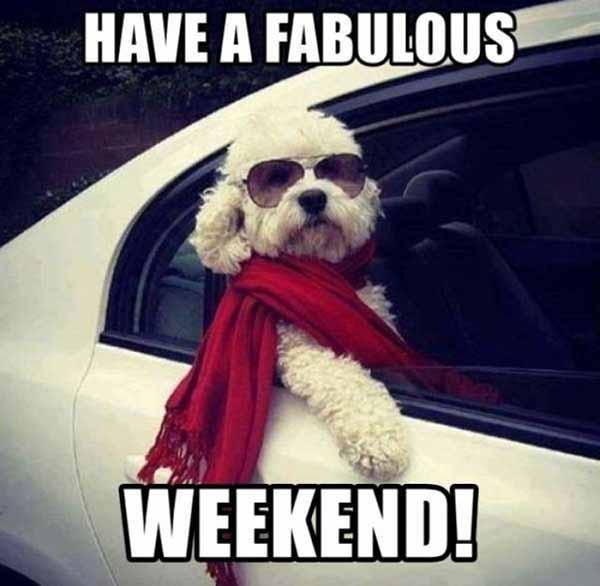 have a fabulous weekend