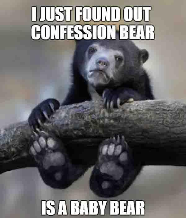 i just found out confession bear is a baby bear