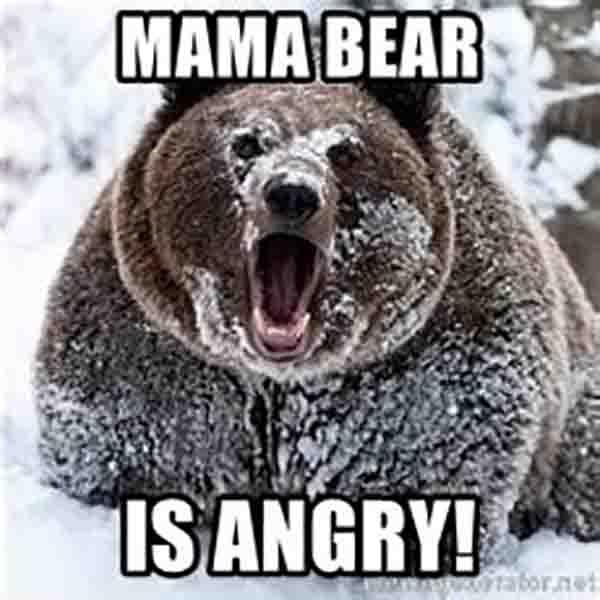 mama bear is angry