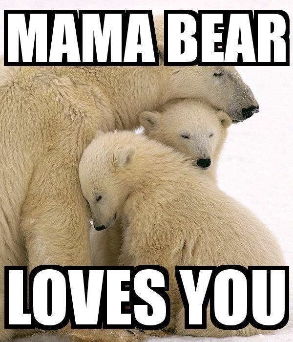 mama bear meme