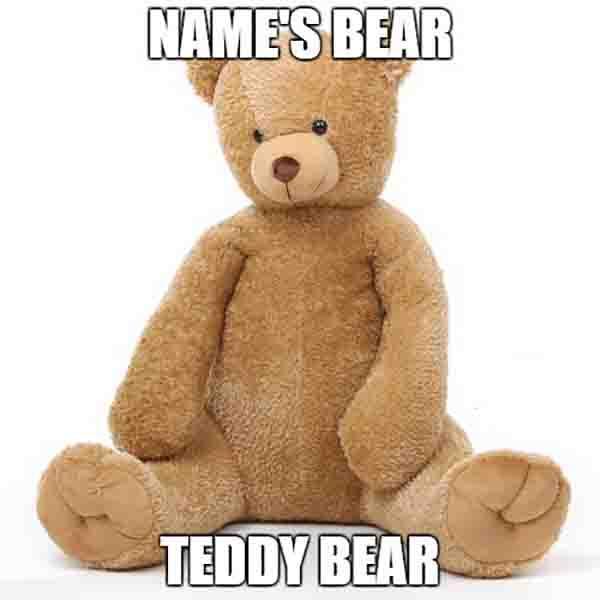 name' bear teddy bear