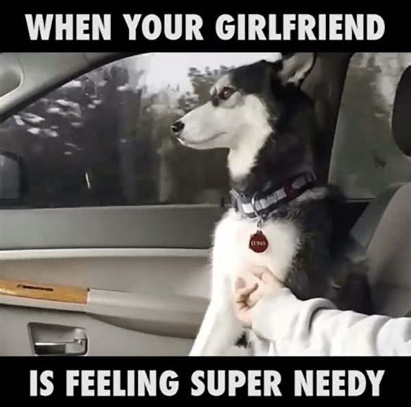 needy girlfriend meme