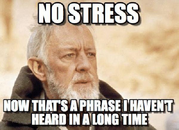no stress meme