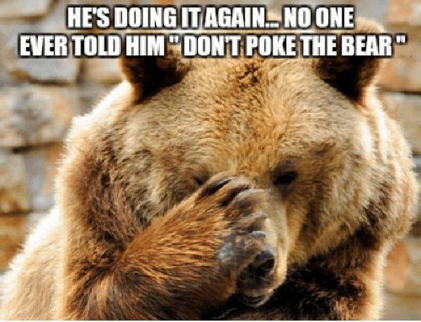 poke the bear meme