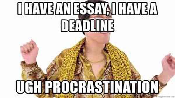 procrastination essay meme
