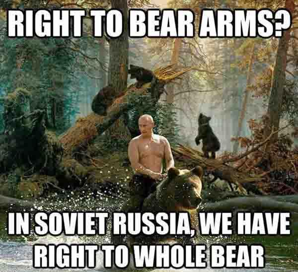 right to bear arms meme
