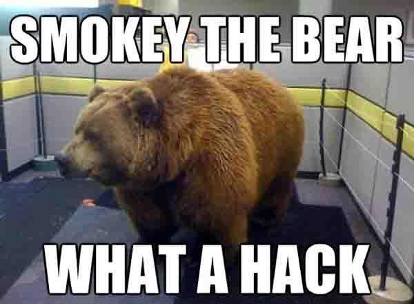 smokey the bear meme