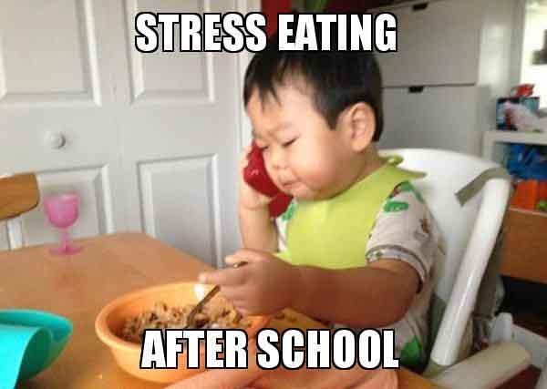 stress eating meme funny