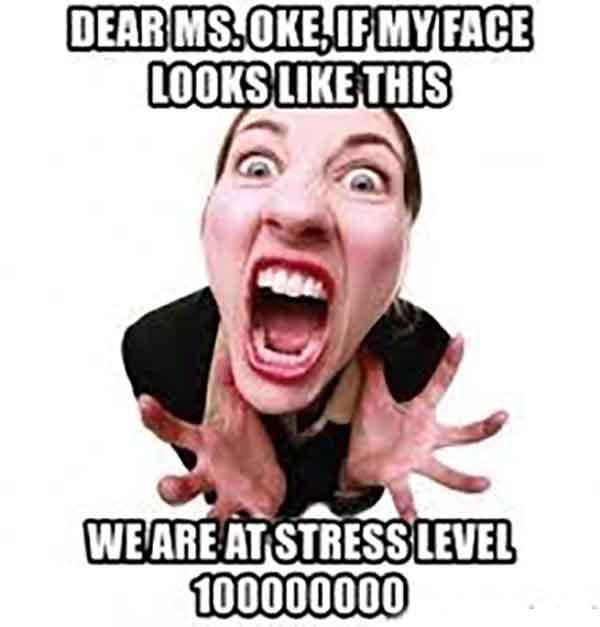 stress meme face