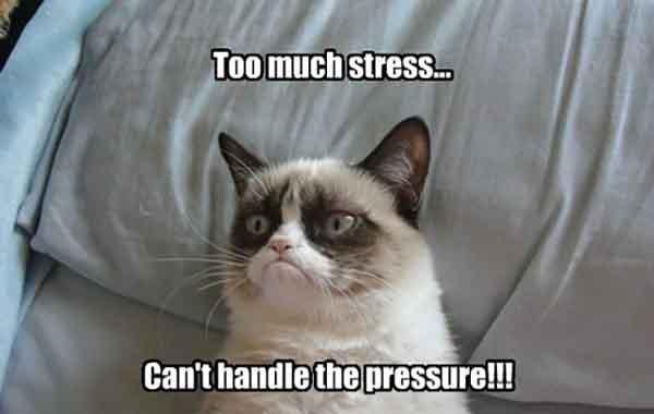 too much stress meme