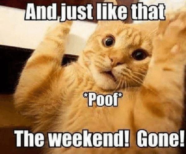 weekend gone meme