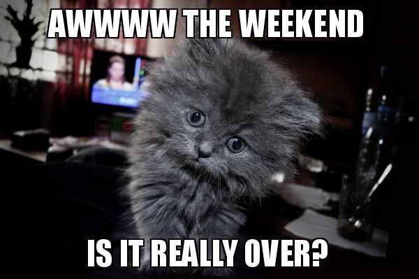 weekend over memes