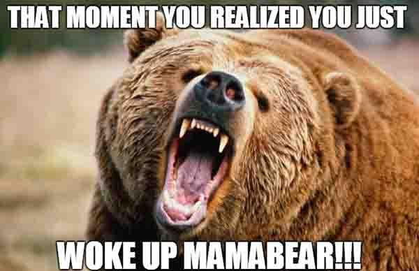 when you woke up mama bear