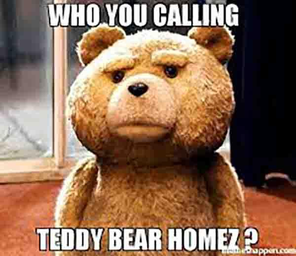 who you calling teddy bear