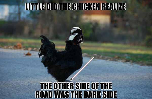 why did the chicken cross the road meme