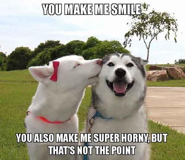 you make me smile meme funny