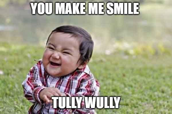 you make me smile tully fully