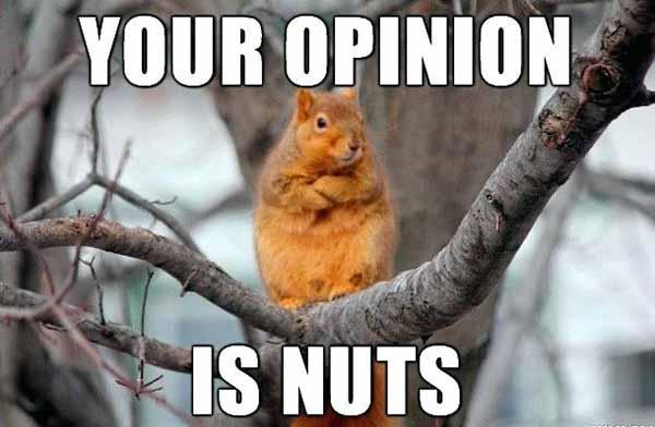your opinion is nuts