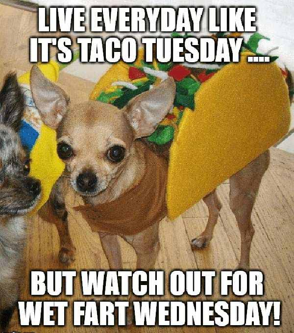 dirty taco tuesday meme