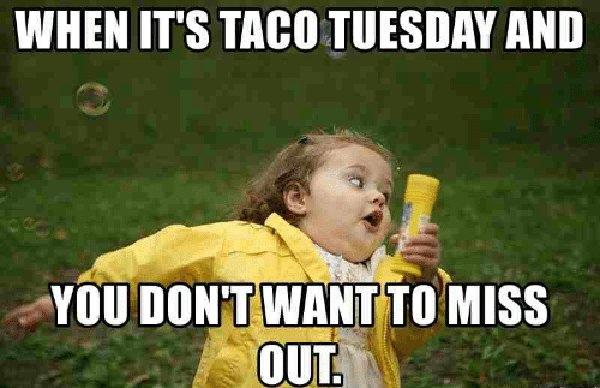 don't miss taco tuesday meme