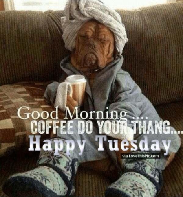funny coffee tuesday meme