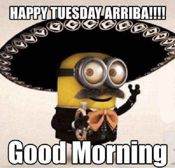 good morning happy tuesday meme
