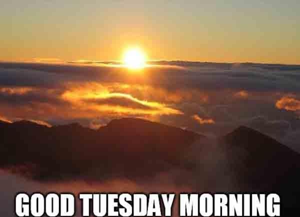 good tuesday morning meme
