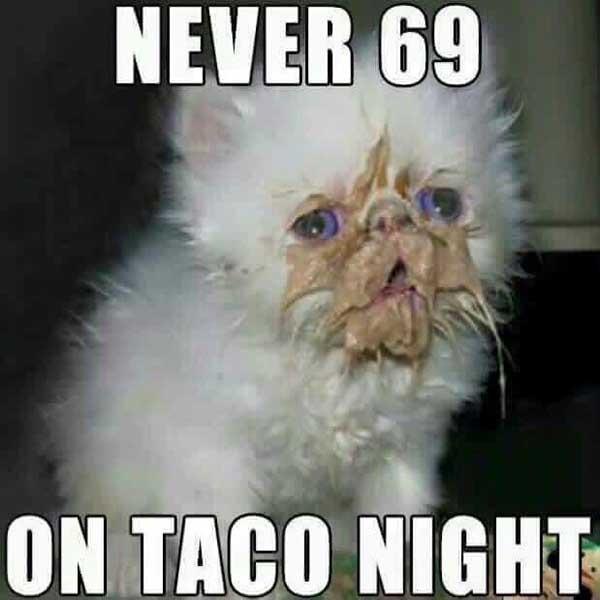 taco night meme