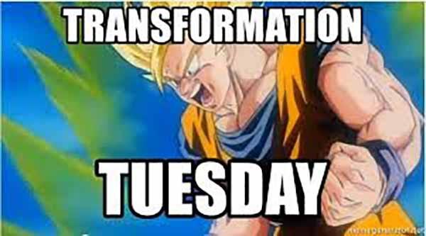 transformation tuesday meme