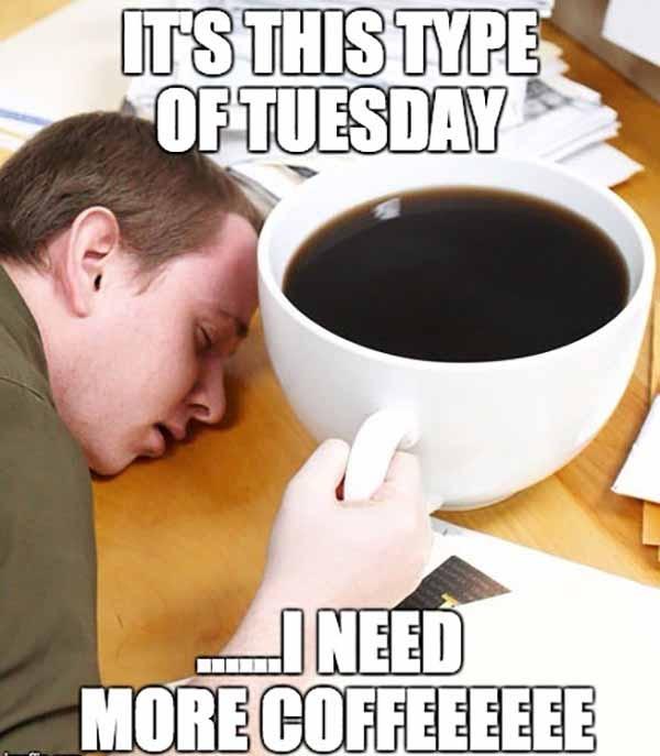tuesday coffee meme